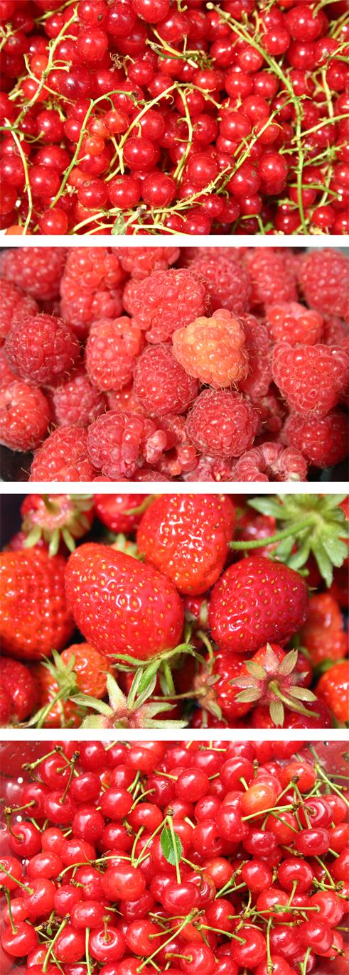 fruitsrouges.jpg