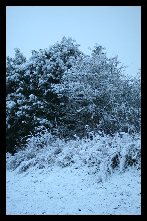 neige7.jpg