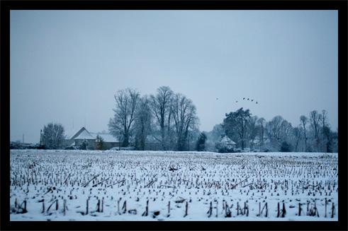 neige9.jpg